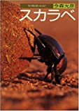 スカラベ―写真昆虫記