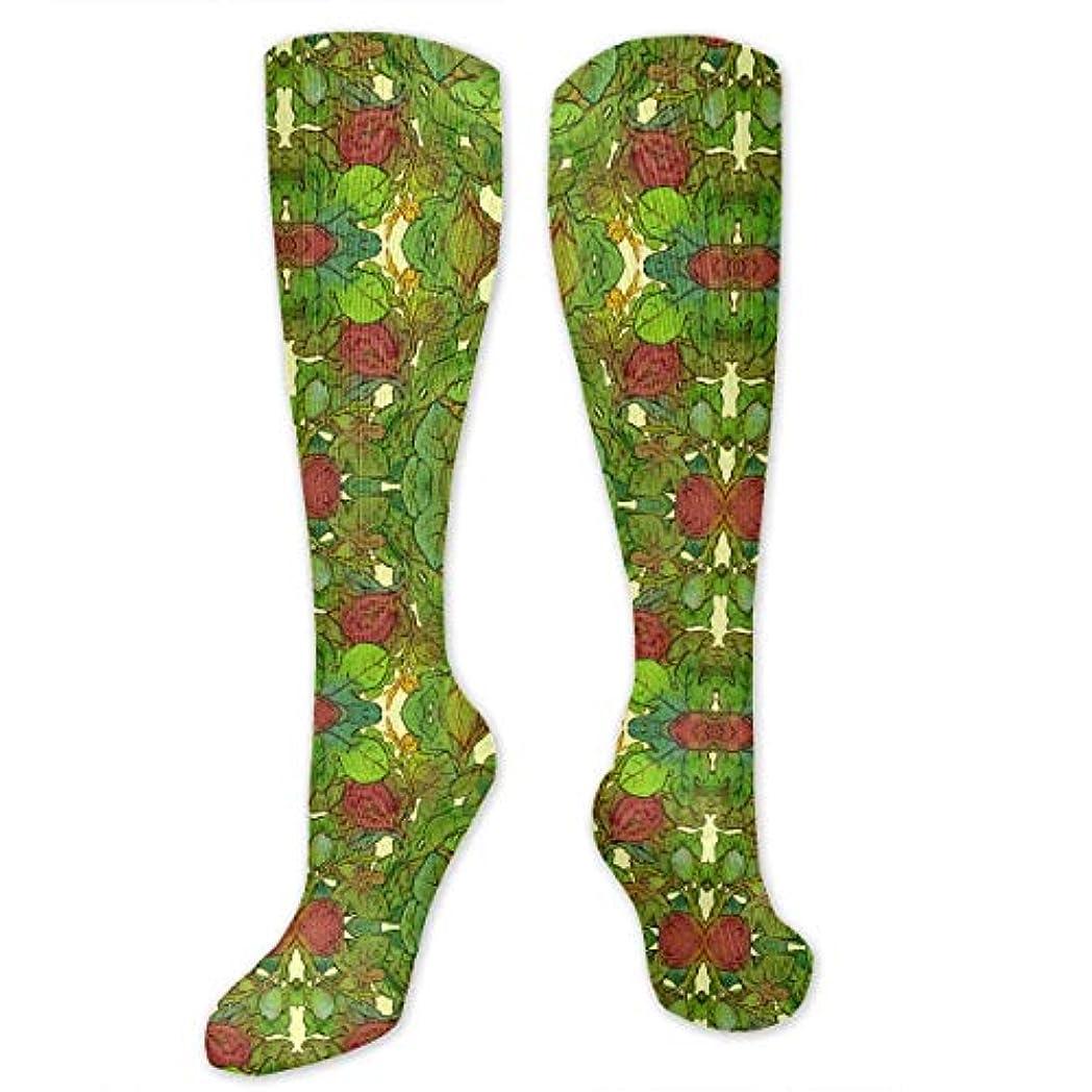 現実的予防接種設計図靴下,ストッキング,野生のジョーカー,実際,秋の本質,冬必須,サマーウェア&RBXAA Fig Tree Socks Women's Winter Cotton Long Tube Socks Cotton Solid...