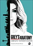 Grey's Anatomy: Complete Season 13/ [DVD] [Import]
