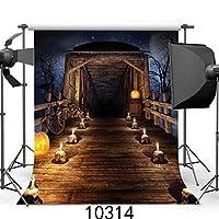 SZZWY 10x10フィート ハロウィーンテーマ スカル シャレット 絵画用布 カスタマイズ写真背景 スタジオ小道具 JLT10314