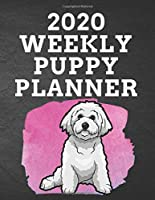 """2020 WEEKLY PUPPY PLANNER: 8.5""""x 11"""" 115 Page Bichon Frise Dog Lover Gift with Pink on Black Back Academic Year At A Glance Planner Calendar With To-Do List and Organizer And Vertical Dated Pages Lovely Bichon a Poil Frise sitting on a splash of pink. (Bichon Frise 2020 Planners)"""