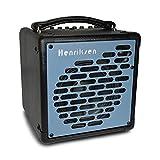 【国内正規品】 Henriksen Amplifiers ヘンリクセン The Blu エレアコアンプ ジャズアンプ