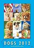 ビッグコミックオリジナル 村松誠犬カレンダー (2012  カレンダー)