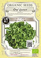 リーフ レタス/オークリーフ/緑/有機 種子 固定種/グリーンフィールド/葉菜 [小袋]