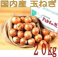 国内産 Lサイズ玉ねぎ 業務用 20kg