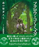 フクロウとコミミズク: 森の賢者たち