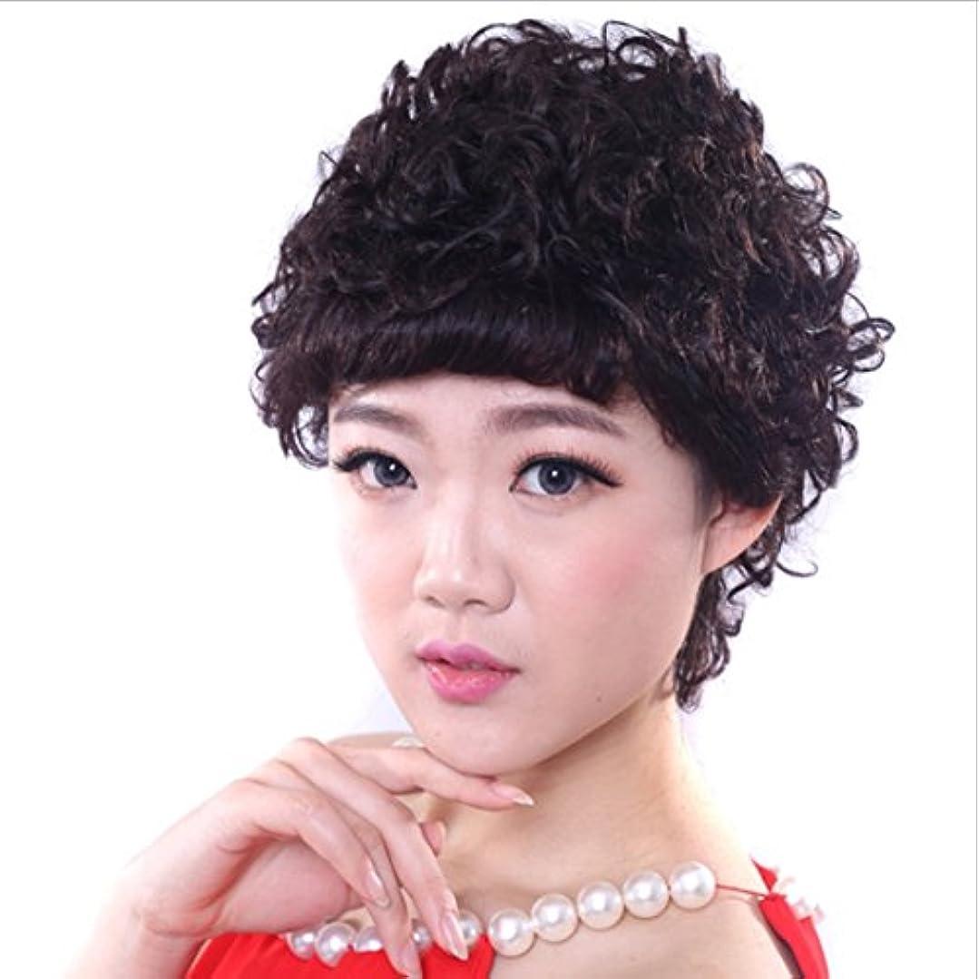 震えうまれた送ったYOUQIU ナチュラルブラックショートカーリーウィッグ - 傾斜中年のために前髪合成デイリーウィッグと古い女性自然な実髪(ブラック)かつらと春巻きウィッグ (色 : 黒)