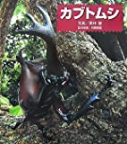 カブトムシ―ドキドキ!生きもの発見〈1〉 (ドキドキ!生きもの発見 1)