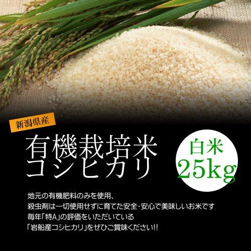 【お取り寄せグルメ】減農薬米コシヒカリ 白米(精米) 25kg(5kg×5袋)/化学肥料ゼロで育てた新潟産有機米