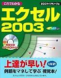 これでわかるエクセル2003 (SCC books)
