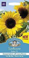 MFFL 英国ミスター・フォザーギルズシード Mr.Fothergill's Seeds Sunflower Soleo F1 サンフラワー(ひまわり)・ソレオ・F1