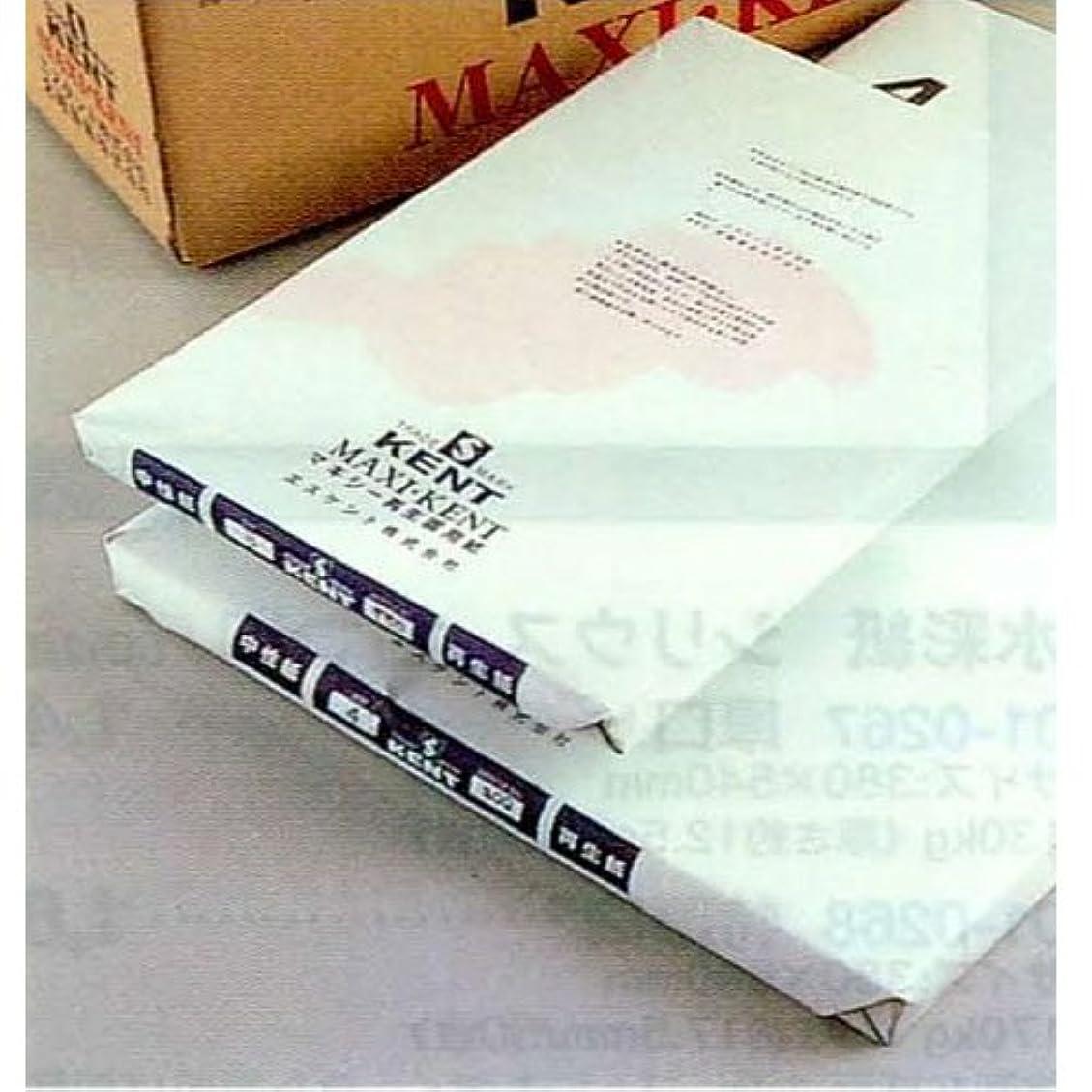 アクセス実行する時マキシー再生画用紙155kg 四つ切100枚 B01-0400