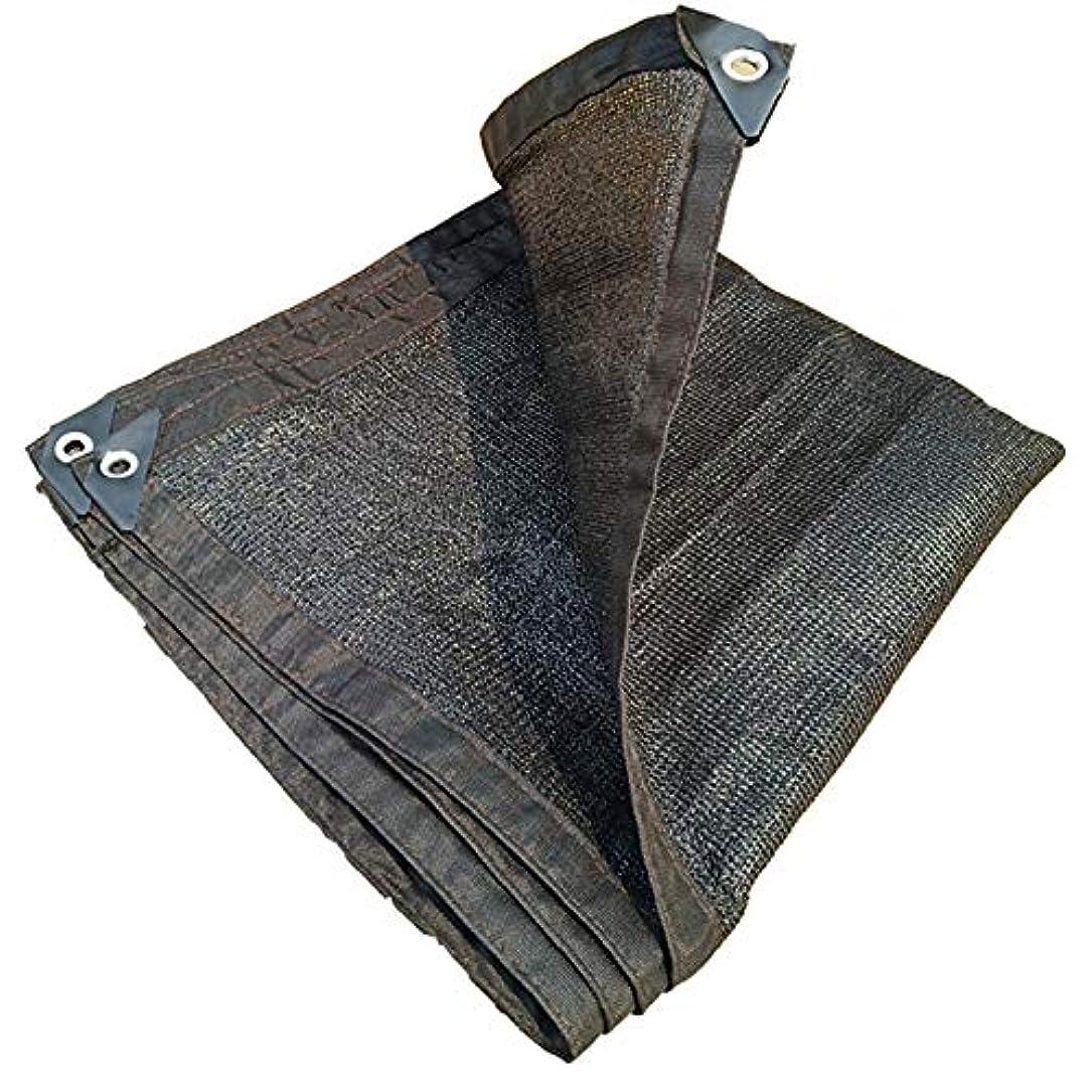 前提条件真実に教育するFEIFEI 日よけの帆布、屋外の日よけの網、日曜日の網の網、植物カバー、ペット陰カバー、紫外線ブロックの生地 (色 : ブラック, サイズ さいず : 2×4m)