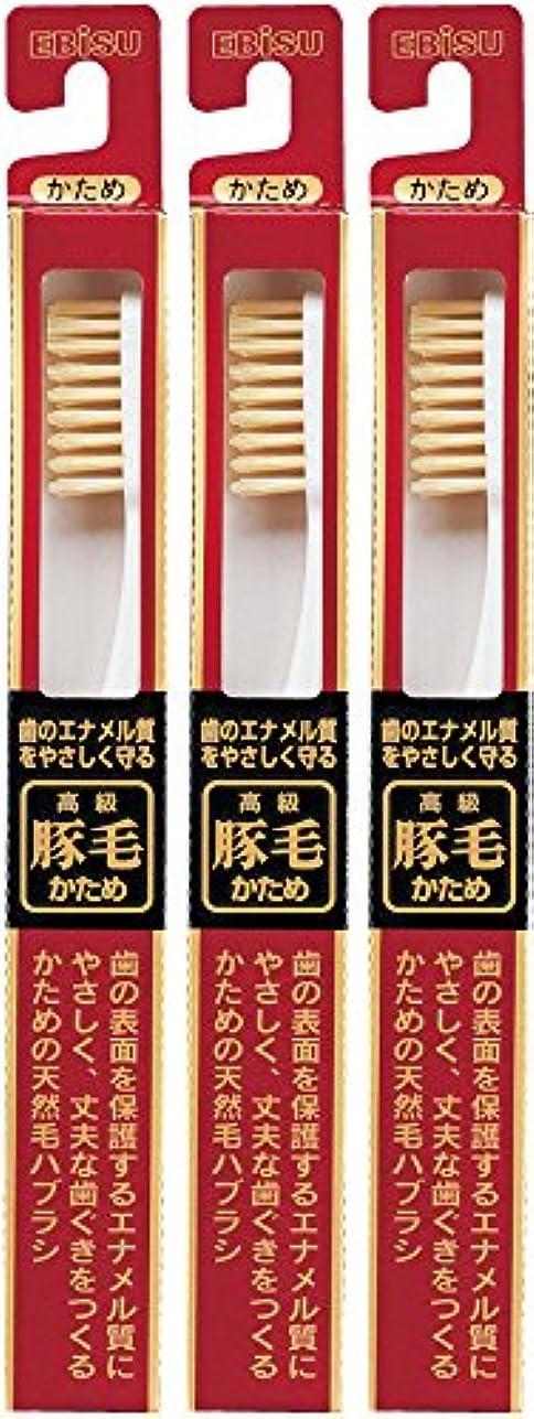 条件付き香水エトナ山エビス 歯のエナメル質をやさしく守る 豚毛 500ハブラシ  3本組