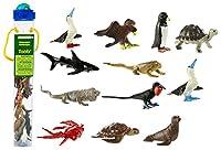 [サファリ]Safari Ltd. Galapagos TOOB 681704 [並行輸入品]