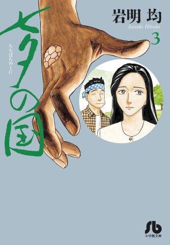 七夕の国 3 (小学館文庫 いK 3)の詳細を見る