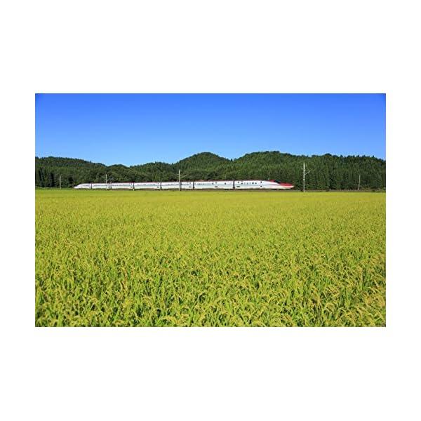 【精米】秋田県産 無洗米 あきたこまちの紹介画像3
