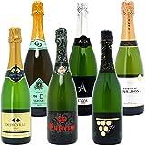 本格シャンパン製法だけを厳選 飲み比べ泡6本セット((W0GX95SE))(750mlx6本ワインセット)