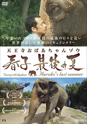 天王寺おばあちゃんゾウ 春子 最後の夏 [DVD]