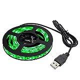 Kaito Denshi(海渡電子) USB 防水 LED テープ ライト 緑色 1チップ(白ベース) 50cm DC5V