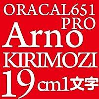 19センチ Arnopro oracal651 ファイングレード 切文字シール カッティングシール カッティングステッカー マーキングフィルム カッティングデカール