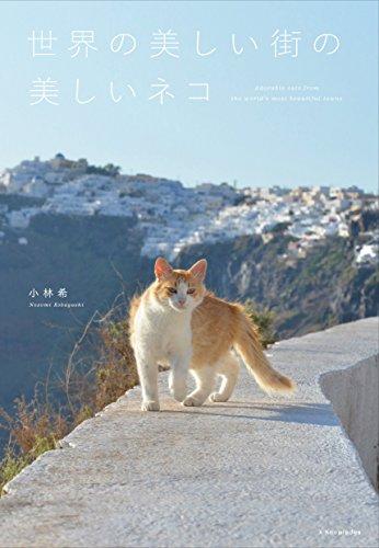 世界の美しい街の美しいネコ