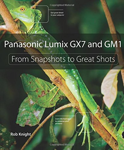 Download Panasonic Lumix GX7 and GM1: From Snapshots to Great Shots 0321996402