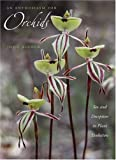 An Enthusiasm for Orchids: Sex And Deception in Plant Evolution