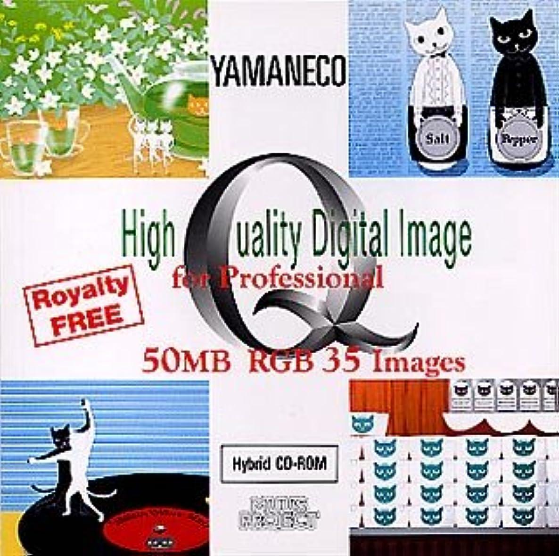 二層知覚的美的High Quality Digital Image for Professional YAMANECO