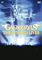 THE SENSE OF OUR LIVES [DVD](在庫あり。)