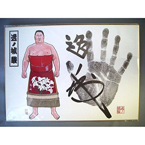 相撲 グッズ年間カレンダー付 姿絵手形色紙 逸ノ城 番付表 ...