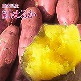 【 熊本県産 】 紅はるか 蜜芋 さつまいも 秀品 (箱込 約5kg)