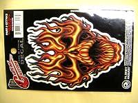 @ギターメンテ ギタータトゥー L GT77013 FLAME WHIP SKULL   ステッカー シール プラネットウェーブス Planet Waves Guitar Tatoos