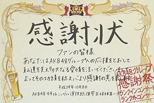 AKB48グループ感謝祭~ランクインコンサート・ランク外コン...