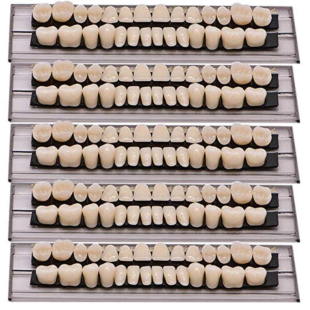 機構懐疑論レルムOral Dentistry 入れ歯ケア 口腔歯科 歯科用アクリル 樹脂 義歯キット ハロウィンホラーの小道具 ホワイト義歯23 A2 アップ&ダウン歯科28個/セット(A2/5セット)