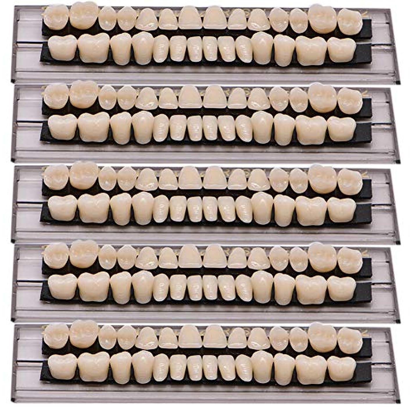 寄託ナチュラルとげのあるOral Dentistry 入れ歯ケア 口腔歯科 歯科用アクリル 樹脂 義歯キット ハロウィンホラーの小道具 ホワイト義歯23 A2 アップ&ダウン歯科28個/セット(A2/5セット)