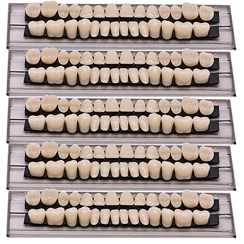 怖い横妖精Oral Dentistry 入れ歯ケア 口腔歯科 歯科用アクリル 樹脂 義歯キット ハロウィンホラーの小道具 ホワイト義歯23 A2 アップ&ダウン歯科28個/セット(A2/5セット)