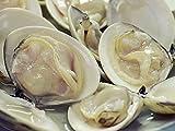 千葉県旭市 飯岡のサンマのなめろうと蛤の酒蒸し