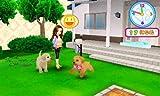 「かわいい仔犬3D」の関連画像