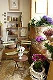 ヨーロッパのフローリスト: 花と雑貨がすてきなお花屋さんをたずねて 画像