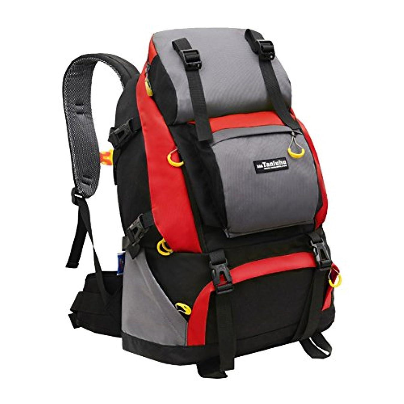 霧深いに渡ってアプトLSERVER アウトドア バックパック 登山リュック 50L 大容量 男女兼用 リュックサック 撥水 通気 登山用バッグ ハイキングバッグ カラー選べる