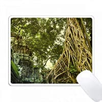 タプローム寺院の遺跡 PC Mouse Pad パソコン マウスパッド