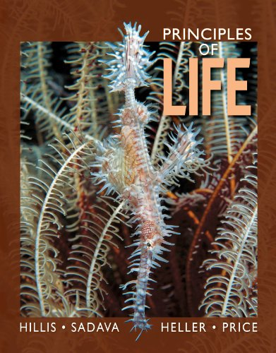 Download Principles of Life: High School Edition 1429291176