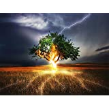 DIY Oil Painting, Komking Paintworks Paint by Numbers Kit for Adults, Thunder Tree Painting Kit for Home Decor Frameless 16x20inch