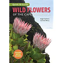 Wild Flowers of the Cape Peninsula – Quick ID Guide