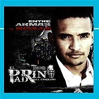 Entre Armas Y Rosas【CD】 [並行輸入品]