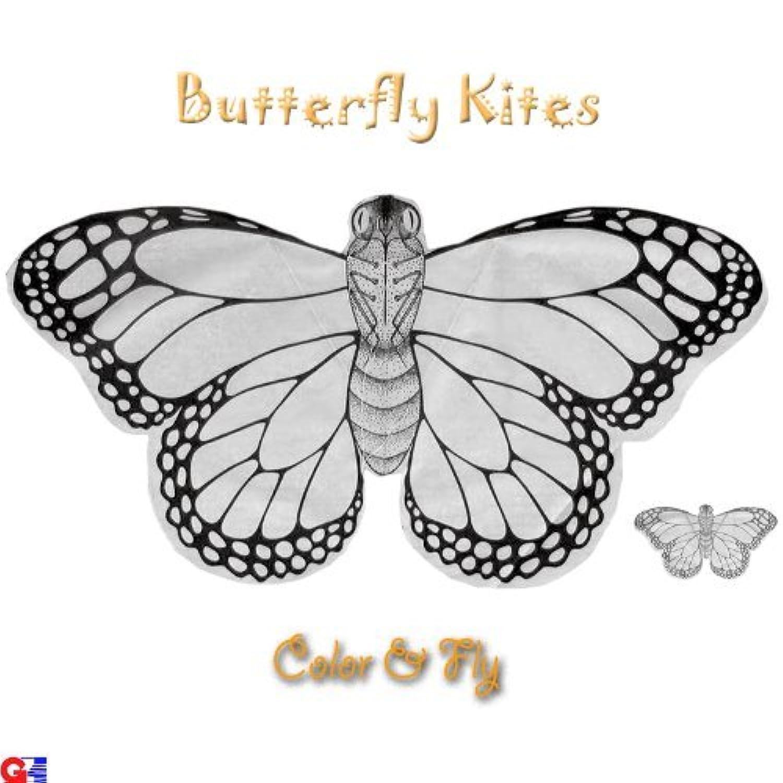 Kid 'sカラーリングKites – パックof 12バタフライKites – ハンドメイドChinese Kites