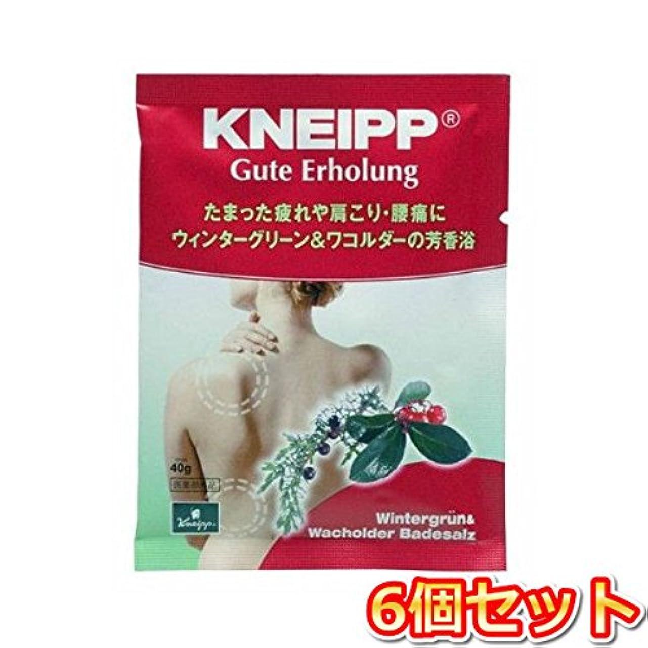 とんでもない療法ガラスクナイプ?ジャパン クナイプグーテエアホールング ウィンターグリーン&ワコルダー 40g(医薬部外品) 6個セット
