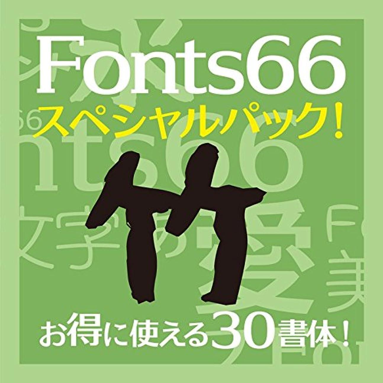 Fonts66スペシャルパック 竹 [ダウンロード]