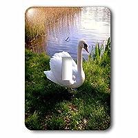 costasonlineshop動物–美しいSwan on the Lake–照明スイッチカバー–シングルトグルスイッチ( LSP _ 236426_ 1)